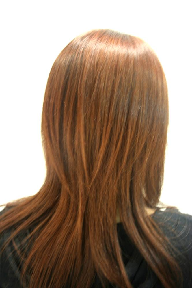 Long Layered Haircuts From The Back View