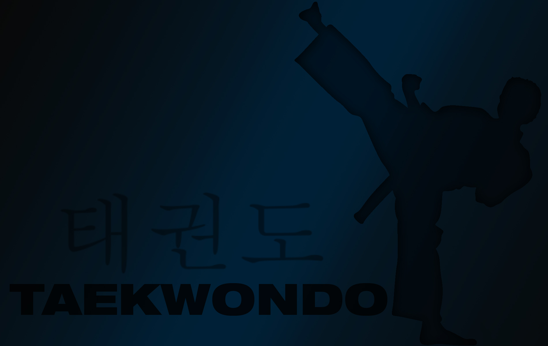 Take Wondo martial Art Wallpaper