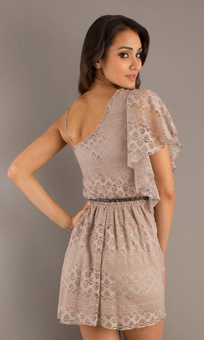 Short Casual Lace Dress