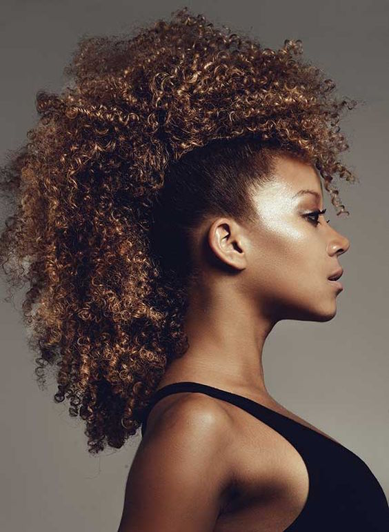 Afro Hairstyles For African American Woman