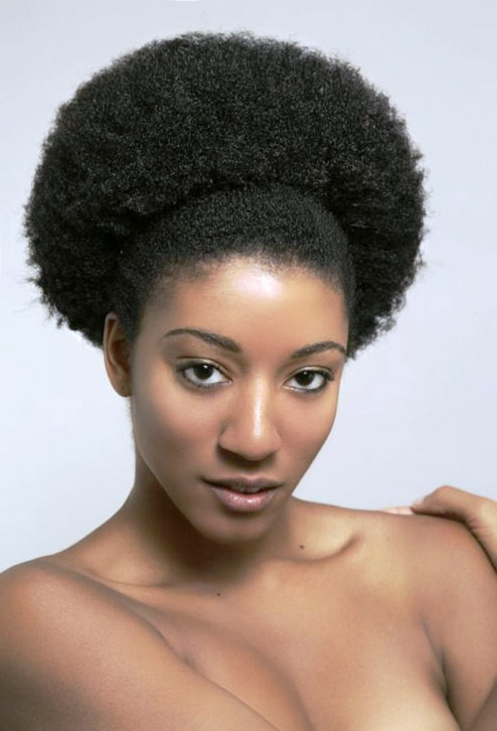 20 Afro Hairstyles For African American Woman's - Feed ... - photo#7